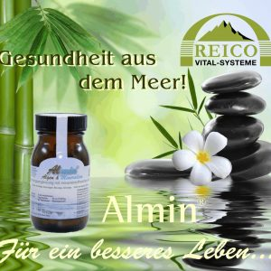 Almin_Marketing planetbox shop  abbenhaus buxtehude reico beraterin