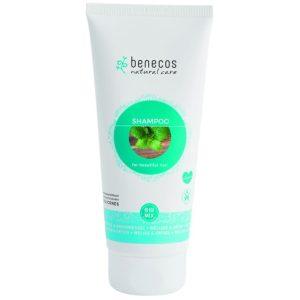 planetbox  du entscheidest de   shop  vegan  bio Benecos natural care - Shampoo Aloe Vera, 200 ml by natuerlich  kaufen  shop  news