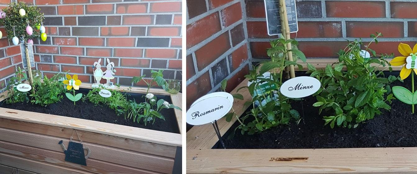 Hochbeet Huchler  erobert den Norden Planebox  du entscheidest News   kein Torf für Hochbeet und Blumenkästen nutzen vegibo com