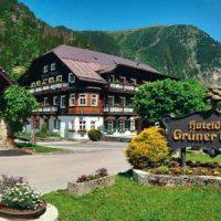 Hoteldorf Grüner Baum BIO-Hotel