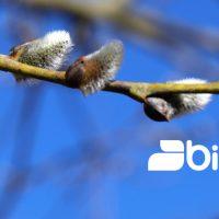 bioculture GmbH