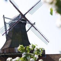 Die Mühle Jork