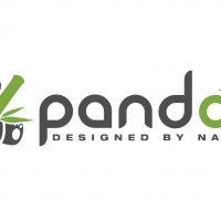 pandoo – wiederverwendbare Alltagsprodukte aus schnell wachsenden Rohstoffen