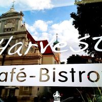 CAFE HARVEST - WIEN