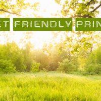 Print Pool | Umweltdruckerei