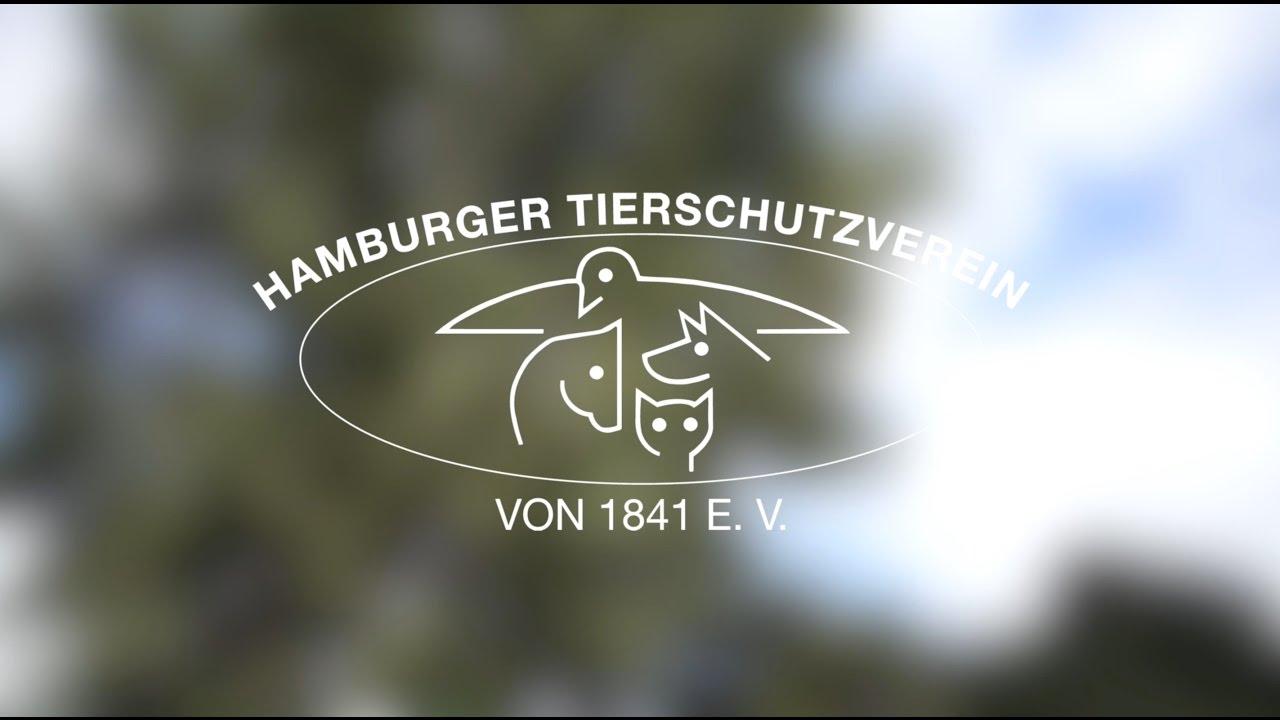 süderstraße hamburg tierheim
